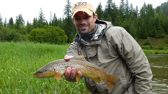 Brown Trout Bull River